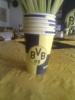 Nur der BVB!_44